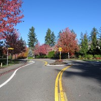 Beaver Lake Dr-Way SE        Traffic Circle