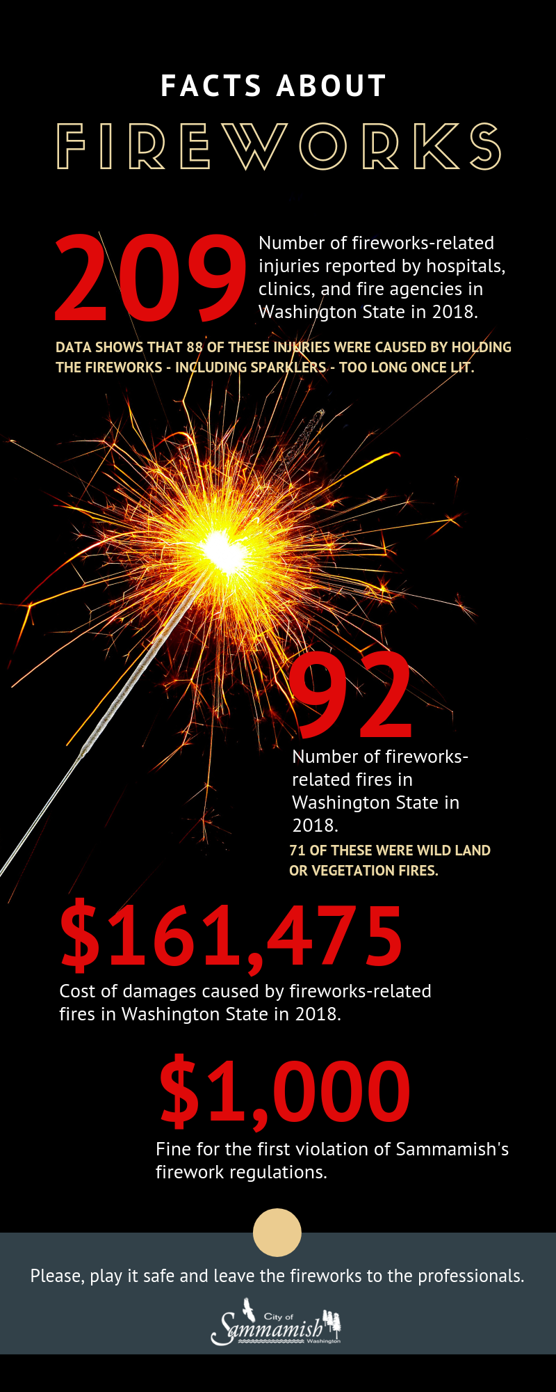 fireworks facts (1).png