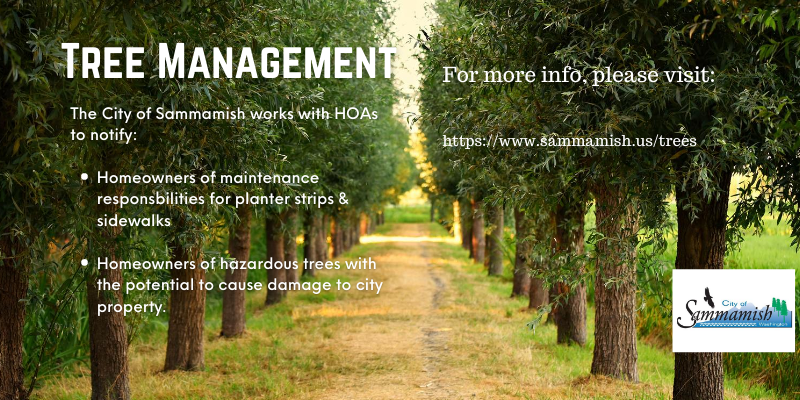 Tree Management HOAs